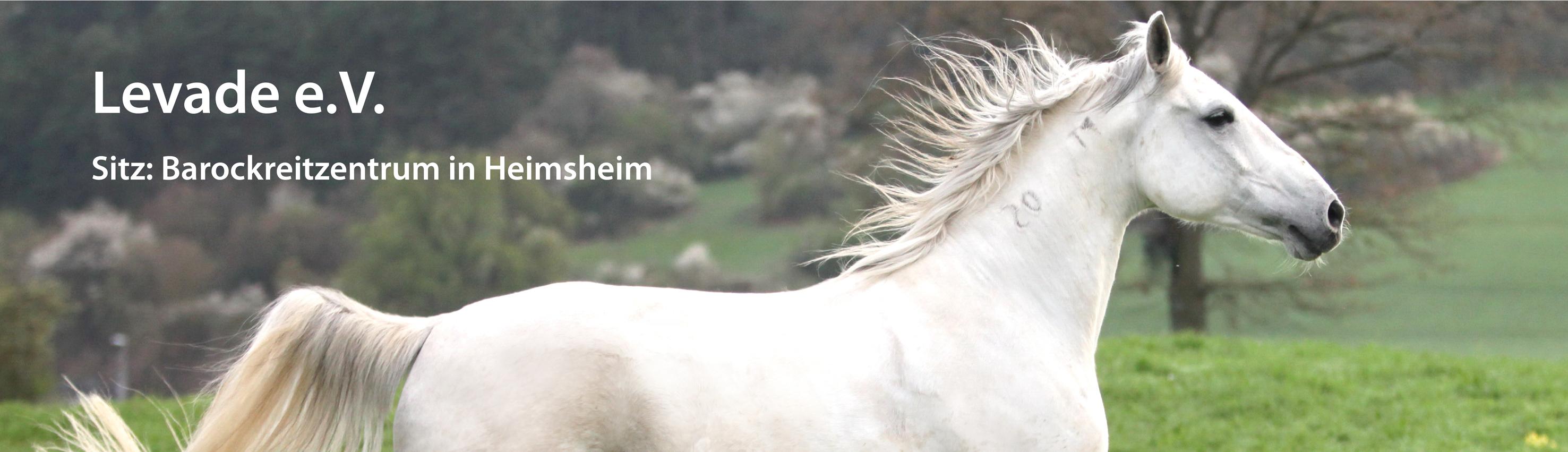 firma krieg heimsheim